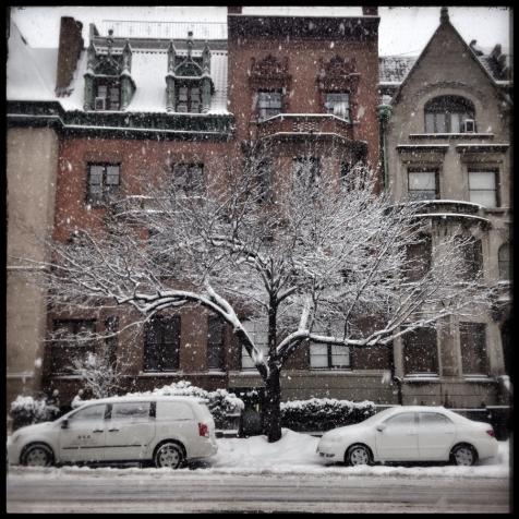 tree_winter3